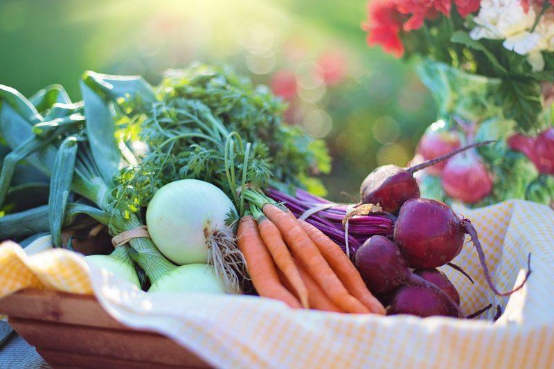 una dieta vegetariana ayuda a bajar de peso
